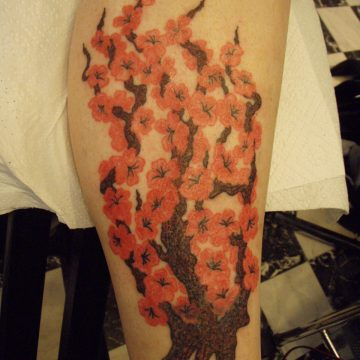 colored_ink_tattoo_bremen_23